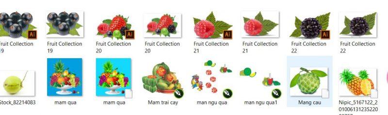 share Free file vector trái cây ngũ quả