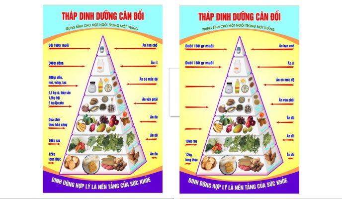 file vector tháp dinh dưỡng
