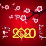 mẫu nền chúc mừng năm mới [Share]