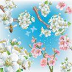 file vector hoa anh đào [Share]
