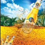 mẫu tờ rơi quảng cáo bia [Share]