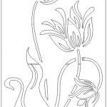 vách ngăn hoa sen vector [Share]